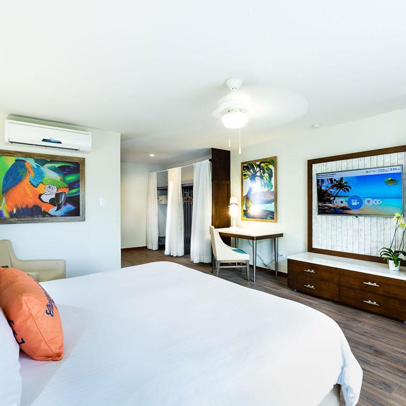 Habitación con vista a la piscina Una cama tamaño King