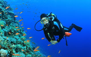 Have Scuba Experiences And Courses in Costa Rica Resort