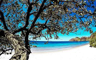 Playa Flamingo es una playa de Bandera Azul