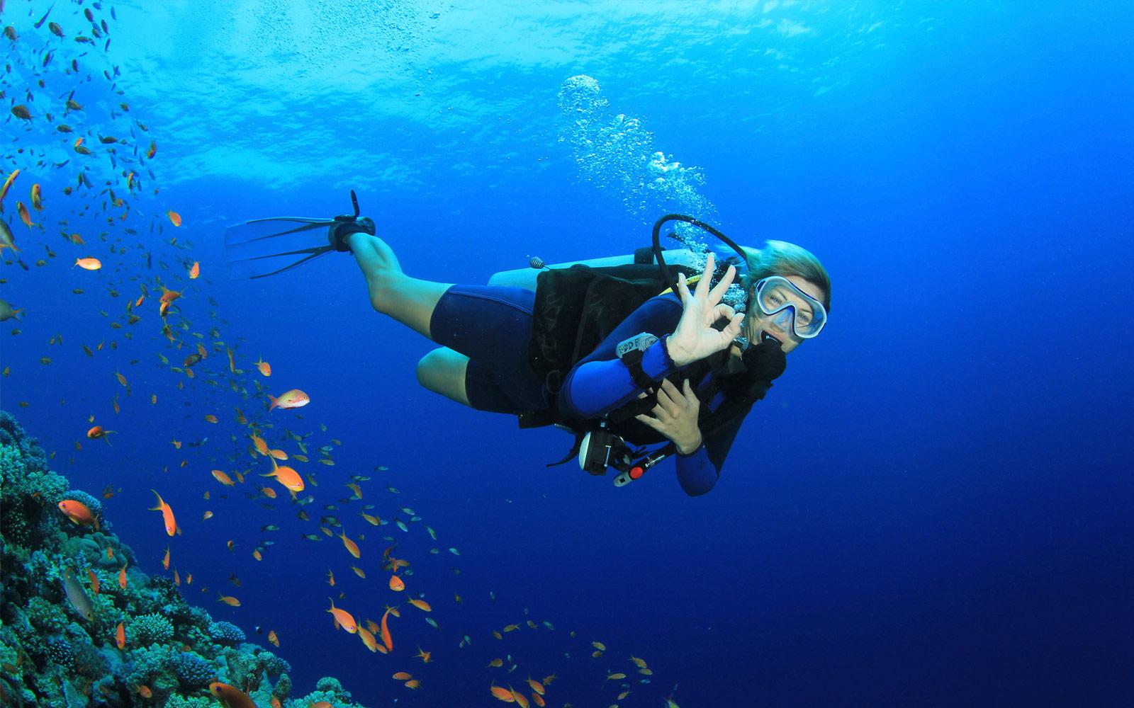 Scuba Diving in Cost Rica