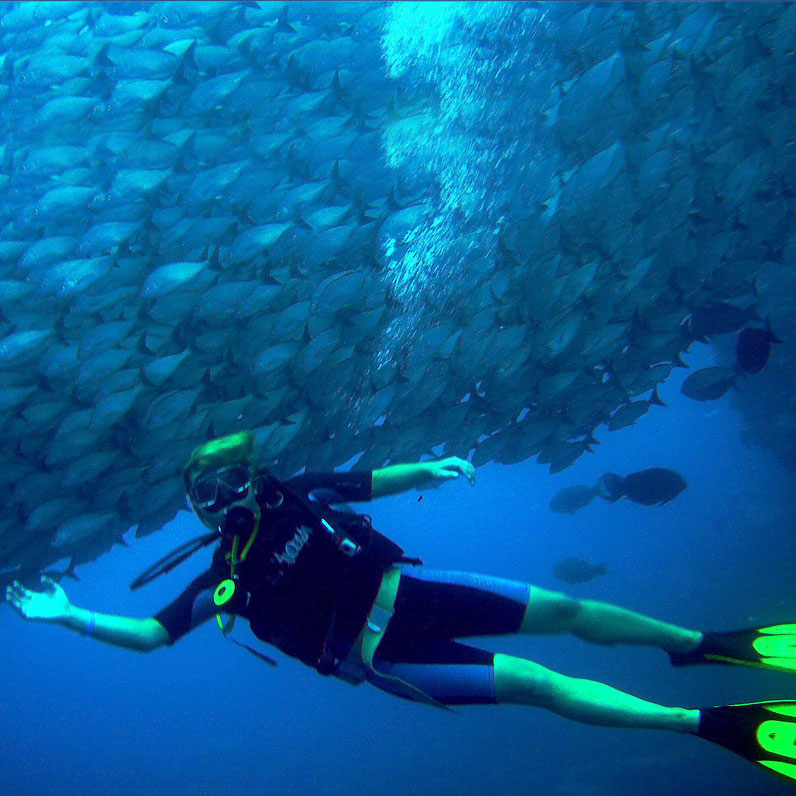 Room Only Scuba Package at Flamingo Beach Resort, Cost Rica