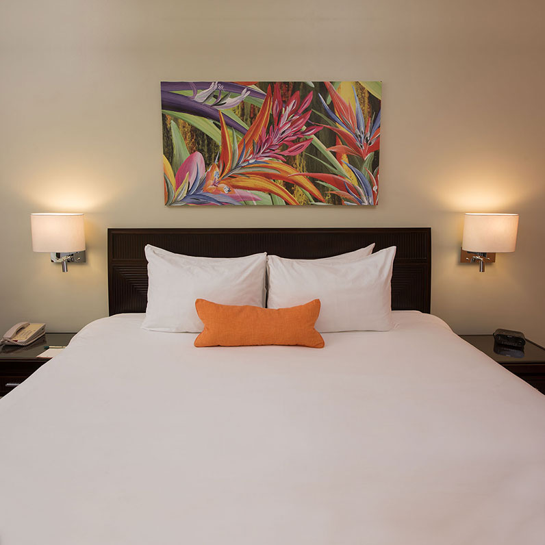 Economy Rooms in Flamingo Beach Resort, Cost Rica